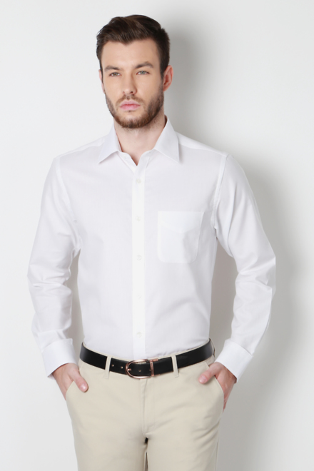 Buy Peter England Men's Shirts-Peter England Shirts Online in ...